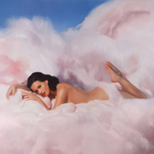 Teenage Dream cover art