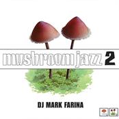 Mark Farina: Mushroom Jazz 2