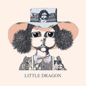 Little Dragon: Little Dragon