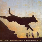 Hootie & The Blowfish: Looking For Lucky