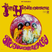 Are You Experienced (US Release)