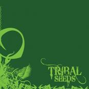 Tribal Seeds: Tribal Seeds