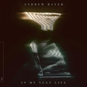 Andrew Bayer: In My Next Life
