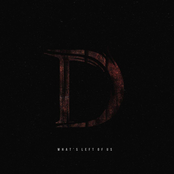 Distinguisher: What's Left of Us
