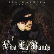 Bam Margera Presents Viva La Bands. Vol 2
