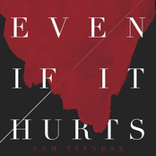 Even If It Hurts - Single