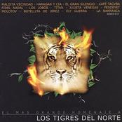 El Mas Grande Homenaje A Los Tigres Del Norte (Reissue)