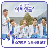 HOSPITAL PLAYLIST (Original Television Soundtrack)