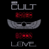 The Cult: Love