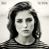 Heart Of Gold by Birdy