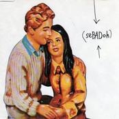 Sebadoh: Rebound