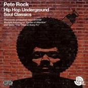 Hip Hop Underground Soul Classics [Disc 1]
