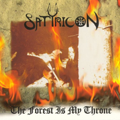 The Forest Is My Throne/Yggdrasil [Split]