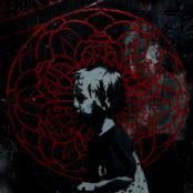 Avatar for mortycja69