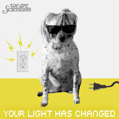 Your Light Has Changed