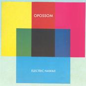 Electric Hawaii (Deluxe Version)