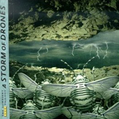 A Storm of Drones