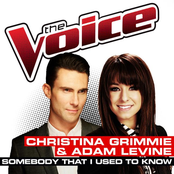 Somebody That I Used To Know (The Voice Performance)