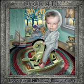 Cloud Cult: Advice From the Happy Hippopotamus