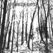 Verborgen in den Tiefen der Wälder