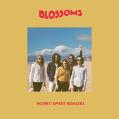 Honey Sweet (Remixes)