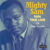 Papa True Love: The Amy Sessions