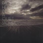 In a Quiet Storm