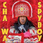 Cha Wa: Spyboy