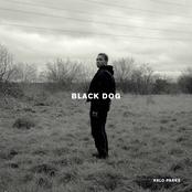 Black Dog [Explicit]