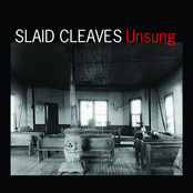 Slaid Cleaves: Unsung