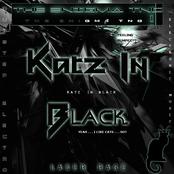 Katz in Black