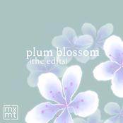 plum blossom (the edits)