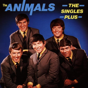 The Singles Plus cover art