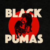 Black Pumas: Colors