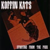 Koffin Kats: Straying From The Pack