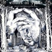 Woods 5: Grey Skies & Electric Light [PROMO]