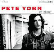 Pete Yorn: Day I Forgot