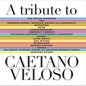 Miguel Poveda: A Tribute to Caetano Veloso