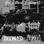 Black Metal Endsieg II (7'' EP)