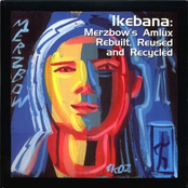 Ikebana: Merzbow's Amlux Rebuilt, Reused And Recycled
