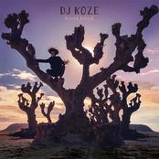 DJ Koze: Knock Knock