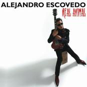 Alejandro Escovedo: Real Animal