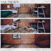 Hail The Sun: Culture Scars