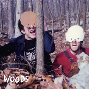 How to Survive In + In The Woods