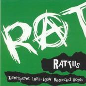 Levytykset 1981-1984