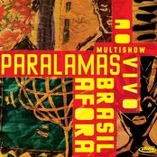 Multishow Ao Vivo - Paralamas - Brasil Afora (Live)