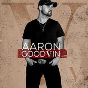 Aaron Goodvin: V
