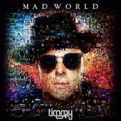 Timmy Trumpet: Mad World