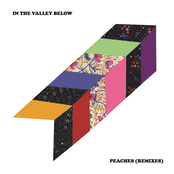In The Valley Below: Peaches (Remixes)