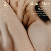 Blanck Mass: Dumb Flesh